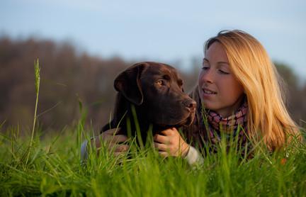 Beruf-Hundetrainer