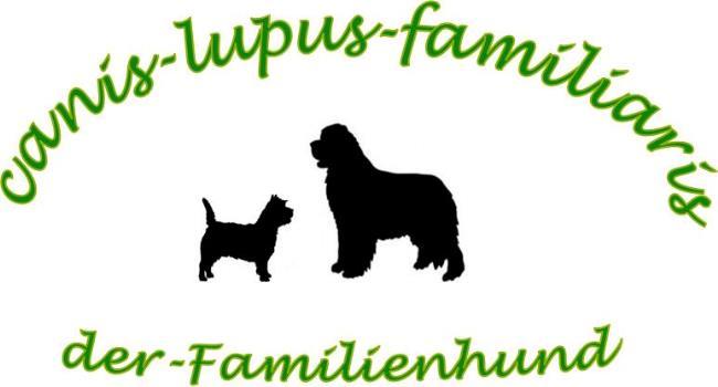 Canis-lupus-familiaris-der-Familienhund