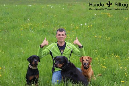 Hunde & Alltag