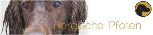 Hundeschule-Bergische-Pfoten