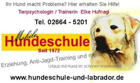 Hundeschule-Hoher-Westerwald