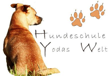 Hundeschule-Yodas-Welt