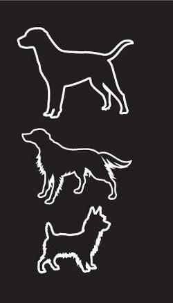 Mensch-Hund-Schule-Nadine-Böttcher