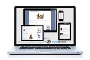Onlinemarketingseminar-Hundetrainer