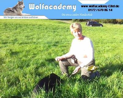 Hundeschule-Wolfacademy-Eifel