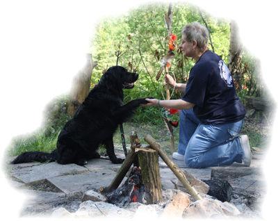Hundeschule Wolfacademy GbR
