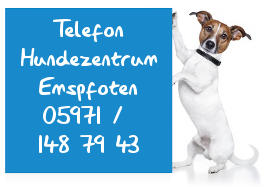 Hundeschule in Rheine - Janine Kuster