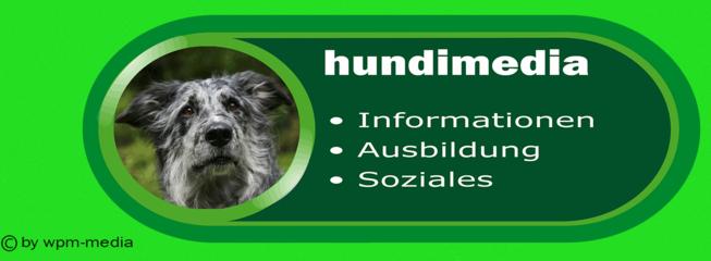 hundimedia-inge-buetnner-vogt