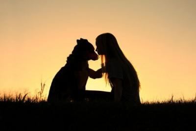 Koerperstrafe-Hunderziehung
