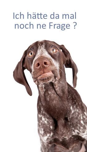 Hundetrainer-Fragen Ich hätte da mal noch ne Frage