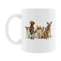 Trainerkaffee